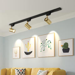 北欧轨道灯家用明装吸顶小射灯金色衣帽间客厅背景墙过道LED射灯